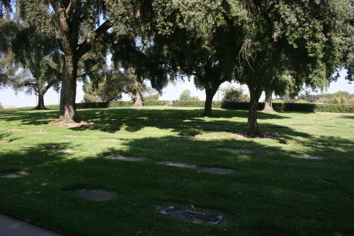 Burwood Cemetery
