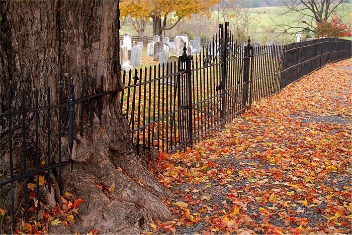 Mossy Creek Presbyterian Church Cemetery
