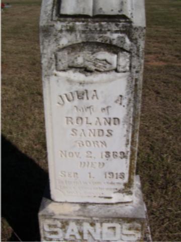 Julia Ann <i>Newell</i> Sands
