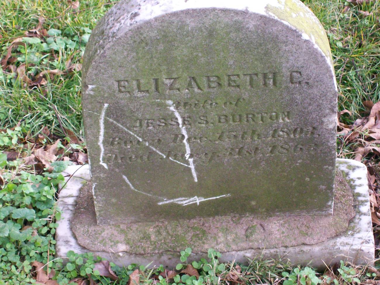 Elizabeth C Burton