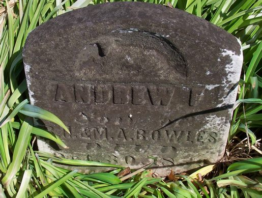 Andrew F Bowles