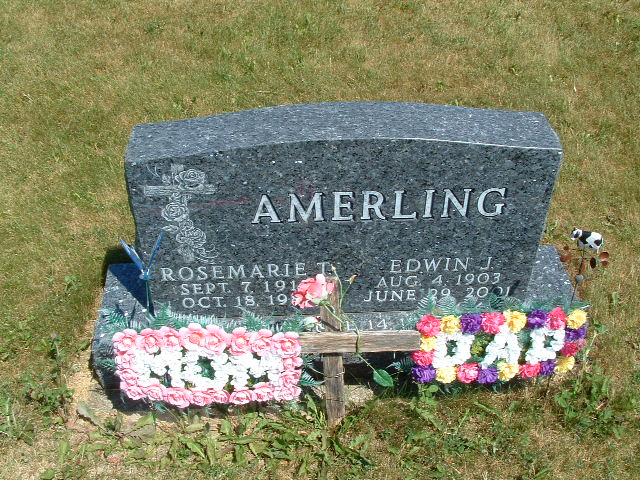 Edwin J Amerling