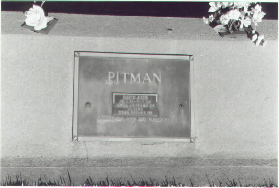 David John Pitman