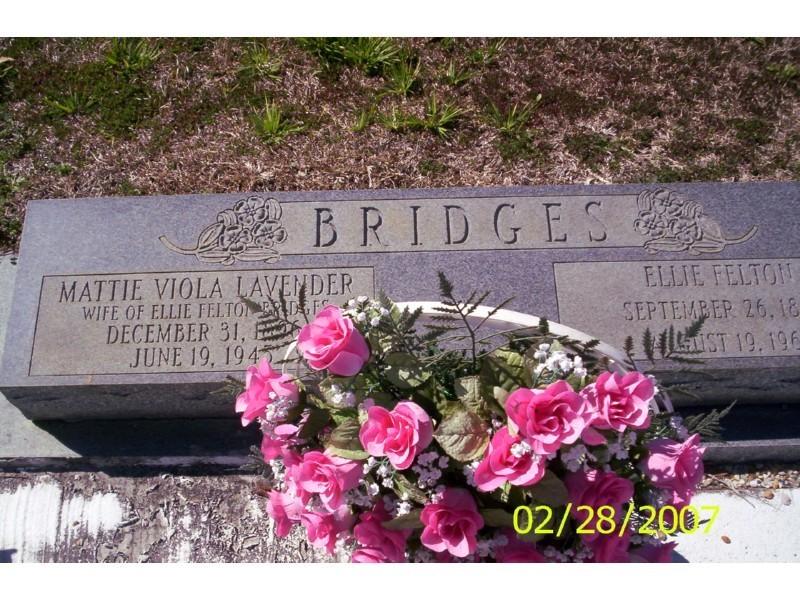 Ellie Felton Bridges