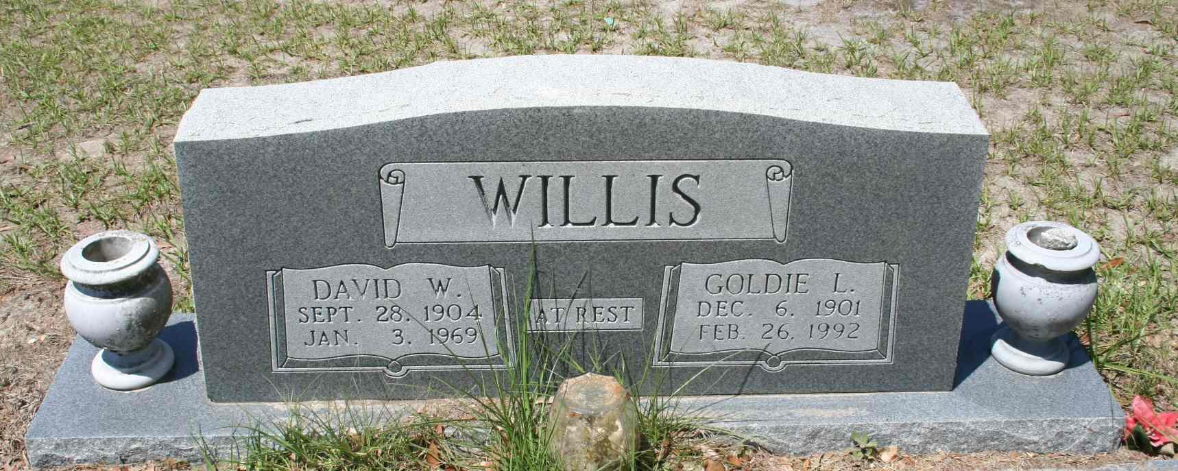 David Washington Willis
