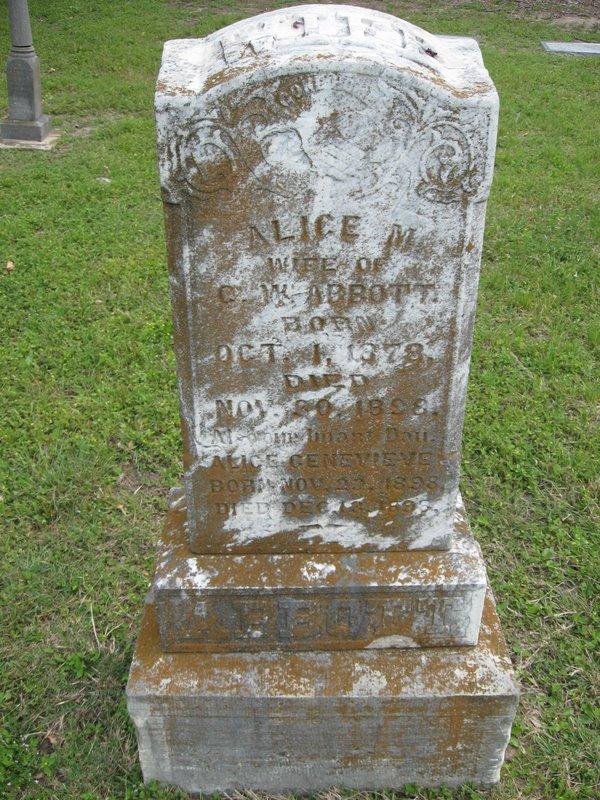 Alice M Abbott