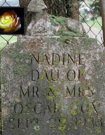 Nadine Cox