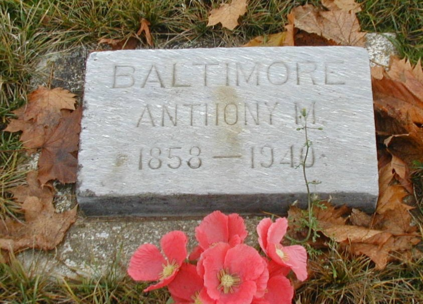 Anthony M Baltimore