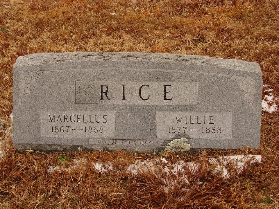 Willie Rice