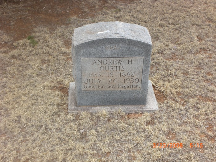 Andrew H Curtis