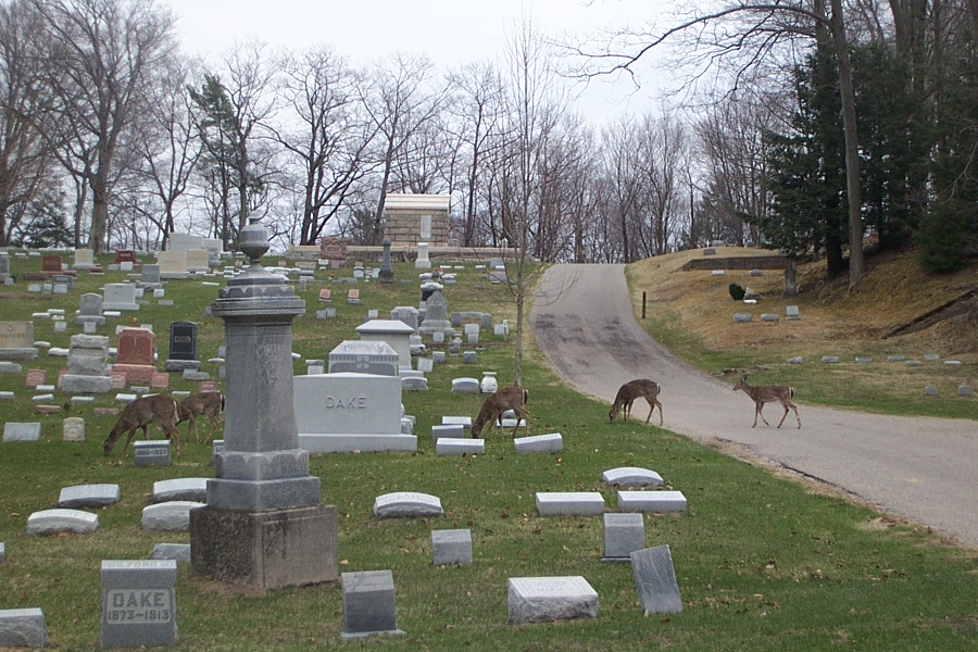 Lake Forest Cemetery in Grand Haven, Michigan - Find A Grave
