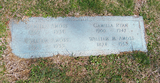 Camilla Elizabeth <i>Power</i> Amoss