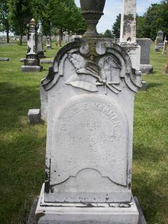Dr Charles E. Hammen