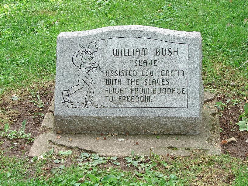 William Bush