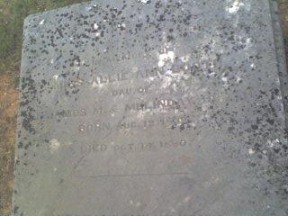 Allie Ann Booth