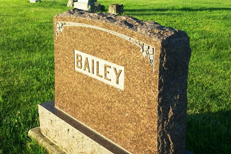 William G Bailey