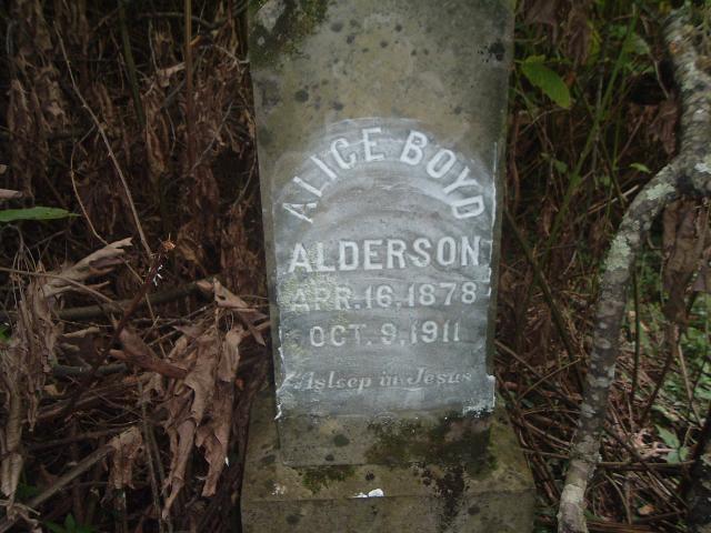 Alice Boyd Alderson
