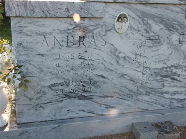 Jessie J. Andras