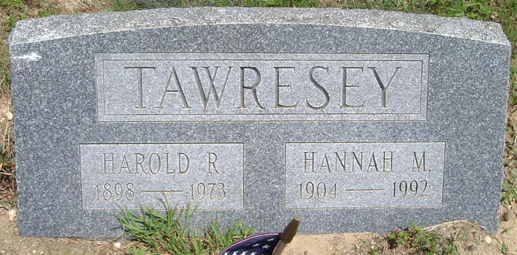 Hannah Sarah <i>McCormick</i> Tawresey