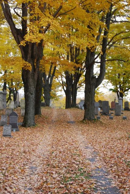 Pompey Hill Cemetery