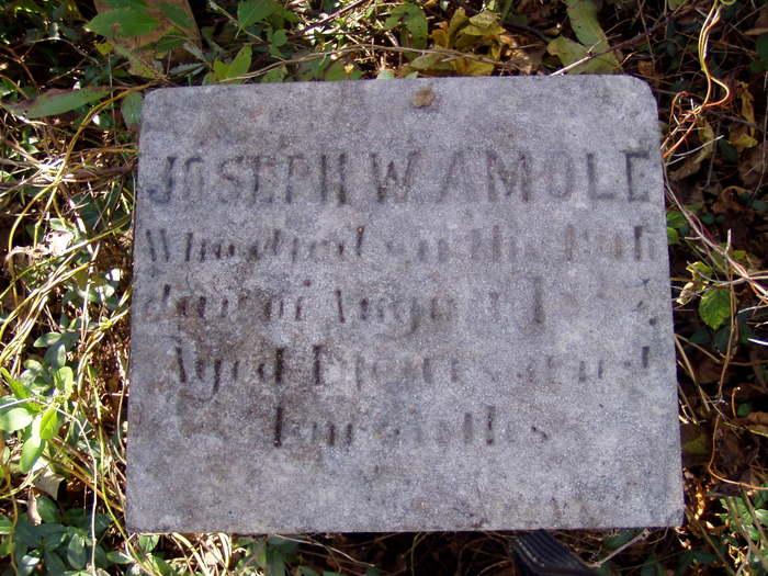Joseph W. Amole