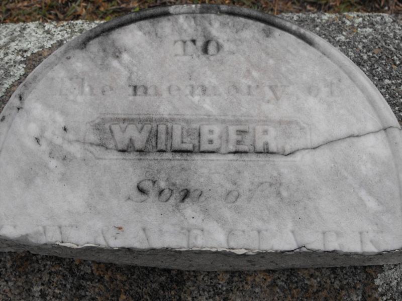 Wilber Clark