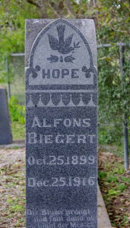 Alfons Biegert