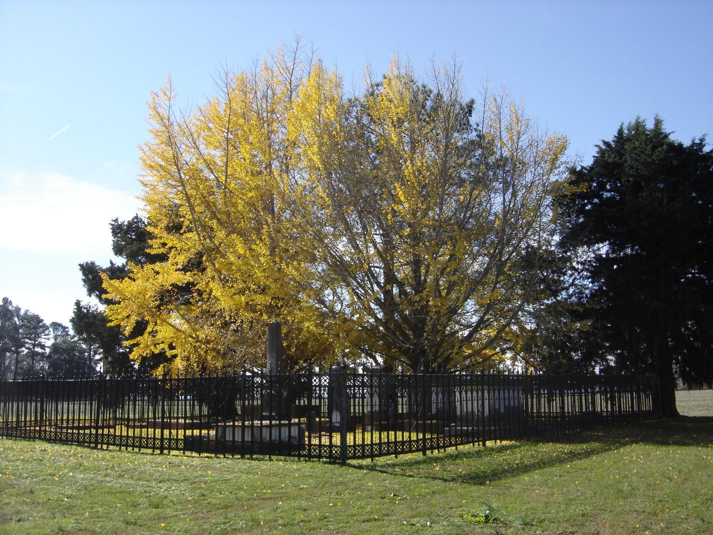 Johnston Family Cemetery