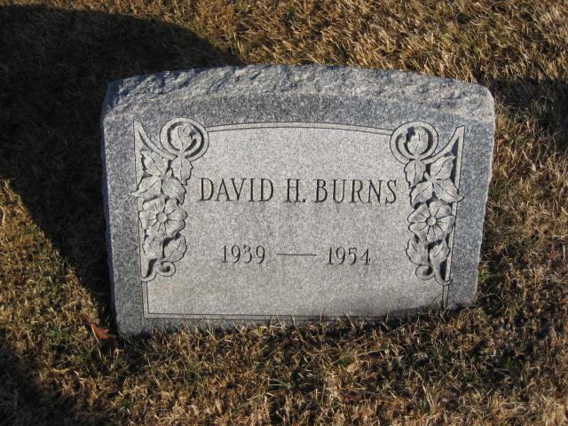 David H Burns