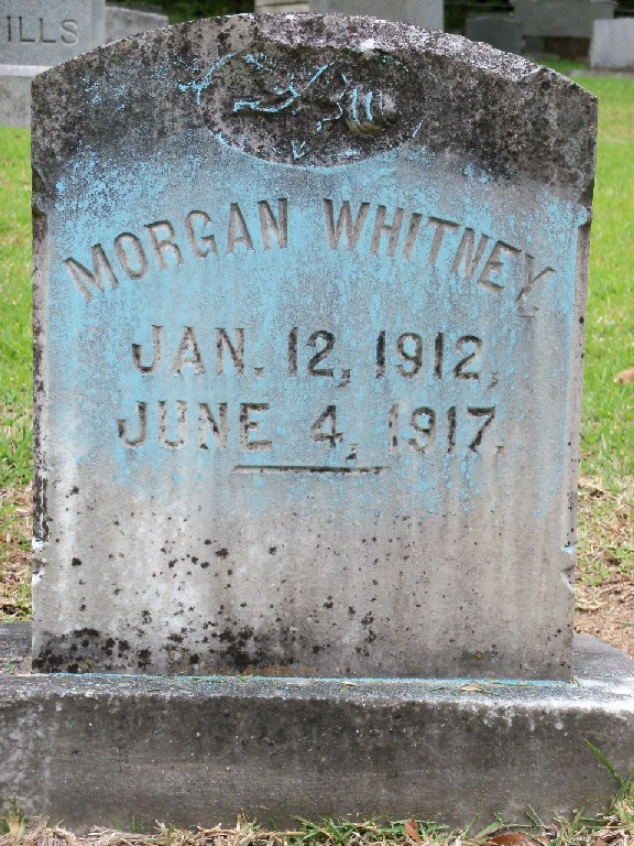 Morgan Whitney