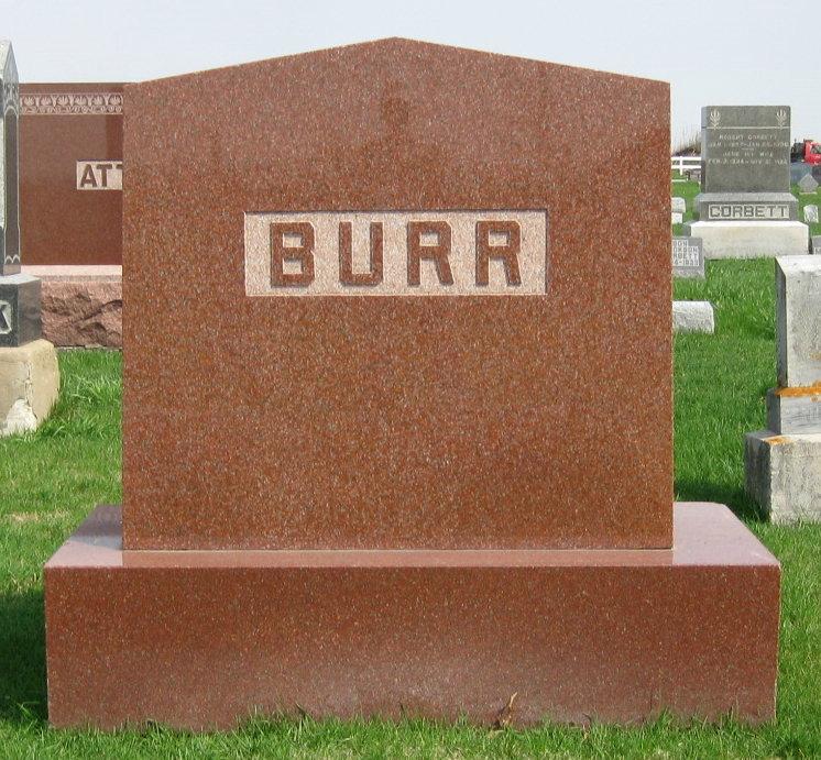 Levi Percival Burr