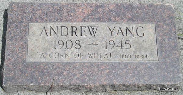 Andrew T. Yang