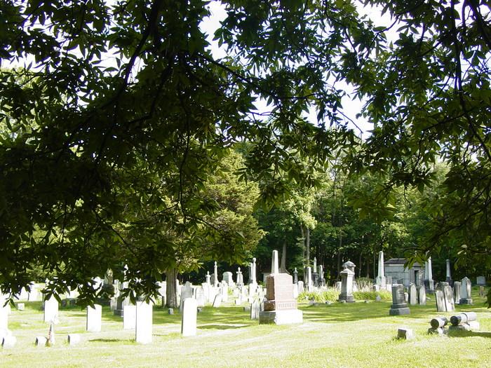 Vischer Ferry Cemetery