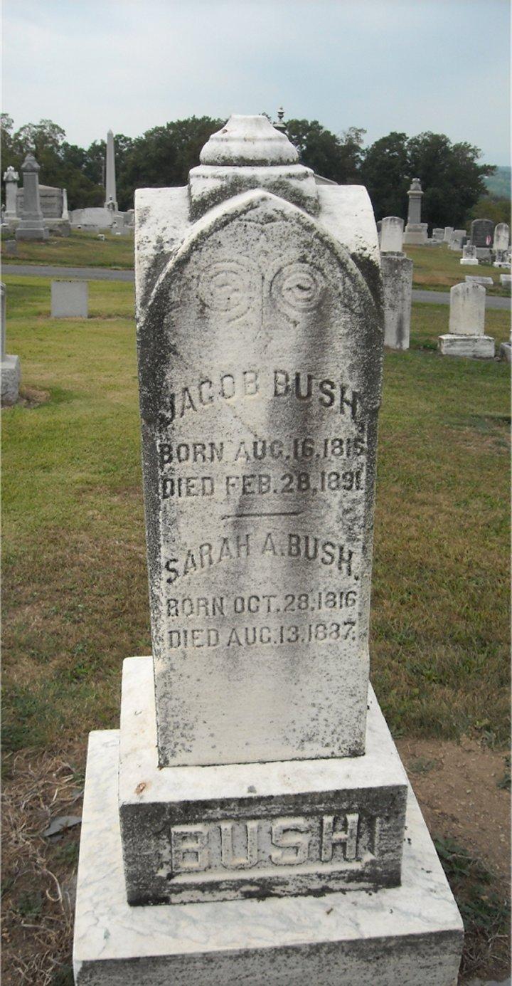 Sarah Ann Bush