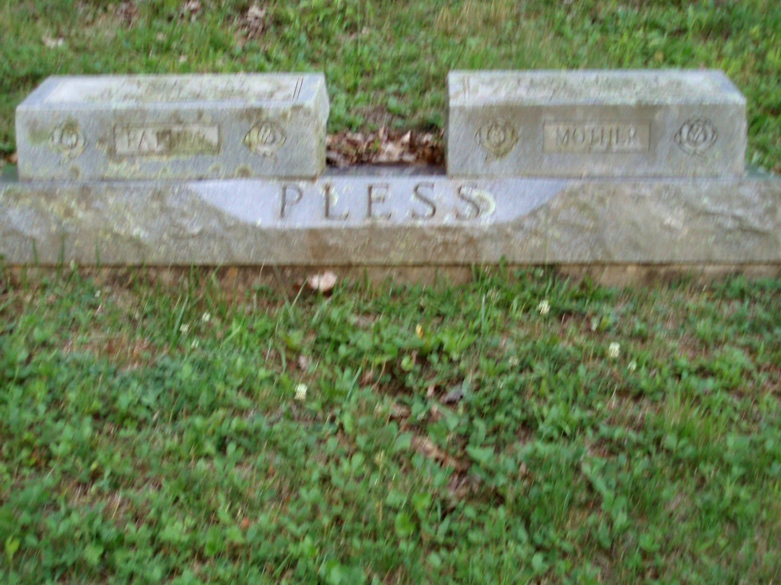 James Martin Pless