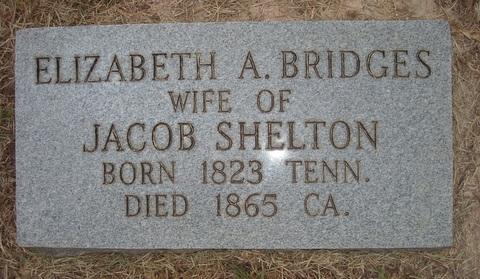 Elizabeth A <i>Bridges</i> Shelton
