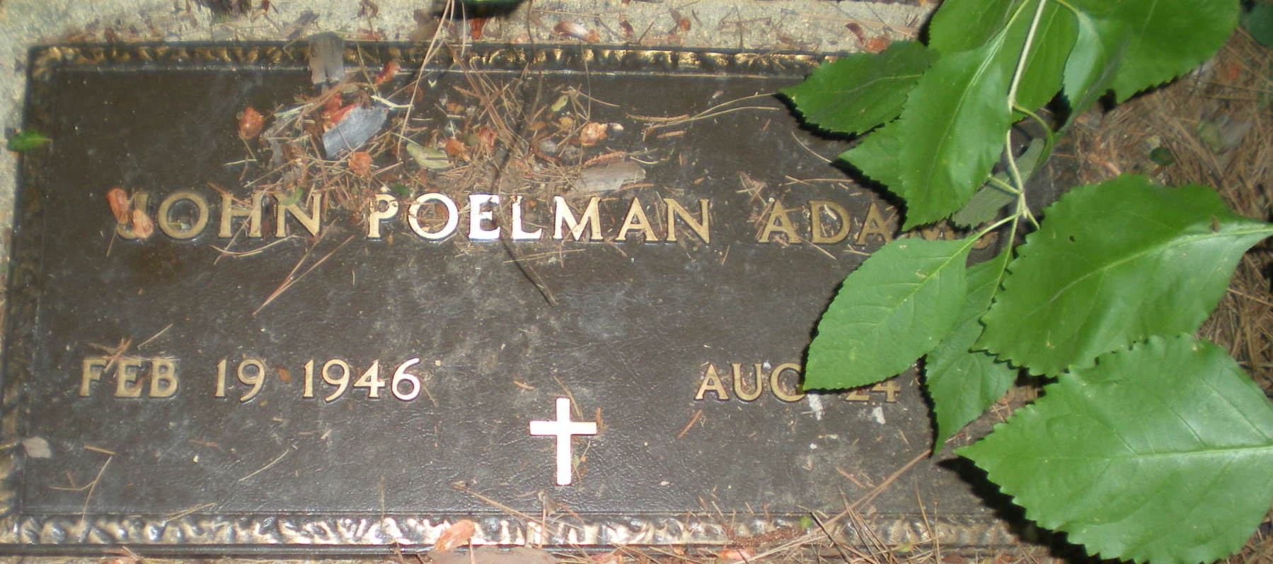 John Poelman Adams