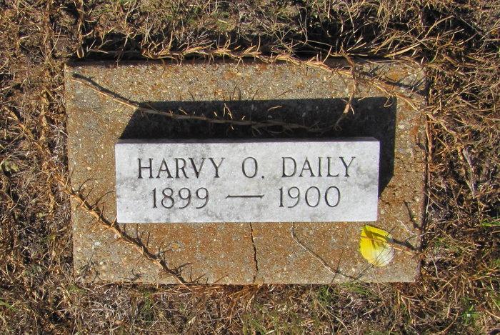 Harvy O Daily