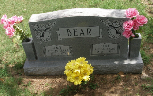 Amy Laura Bear