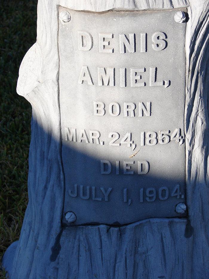 Denis Amel