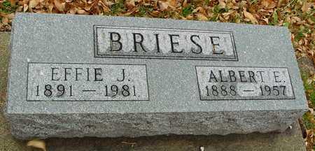 Albert Edward Briese