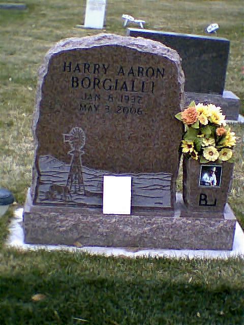 Harry Aaron Borgialli