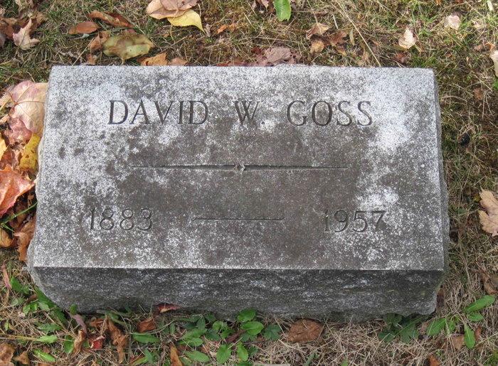 David W Goss