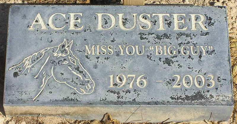 Ace Duster