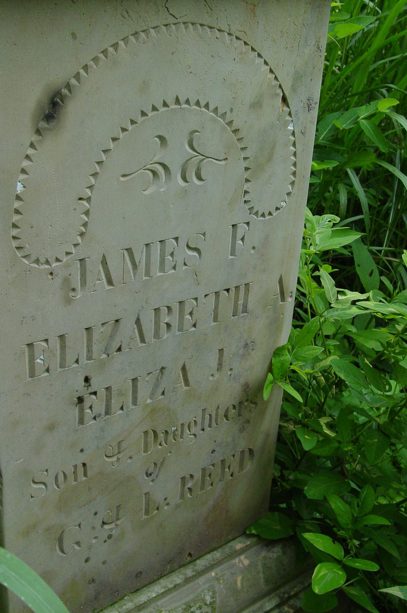 Elizabeth A. Reed