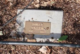 James P Vallem