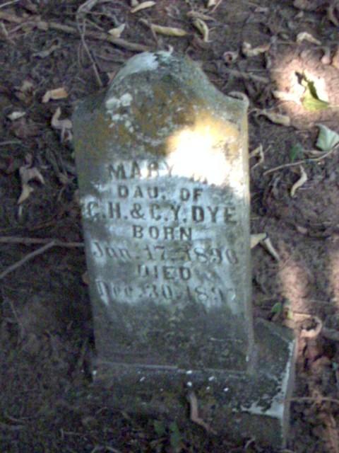 Mary M Dye