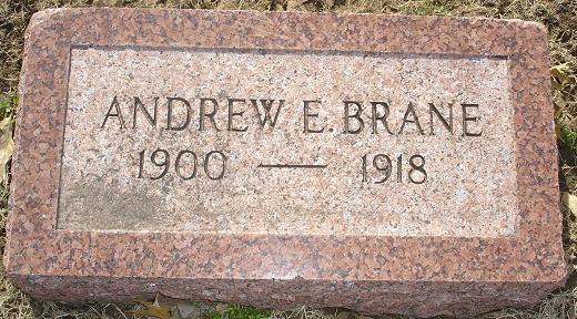 Andrew E. Brane