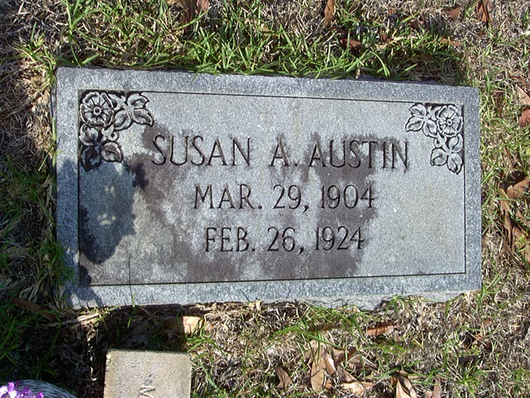 Susan A Austin