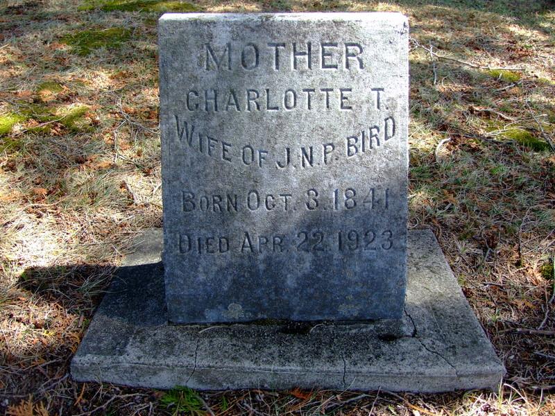 Charlotte Temple <i>Parker</i> Bird